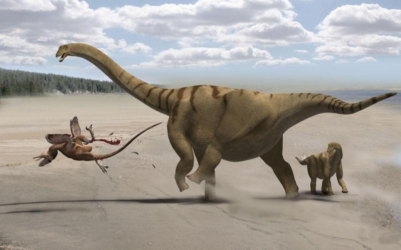 Paleontologie, l'actu... Bronto10