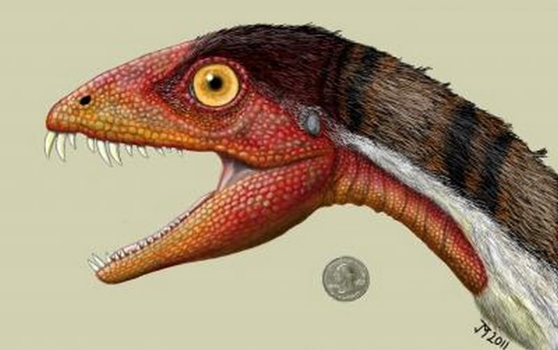 Paleontologie, l'actu... Dinosa10