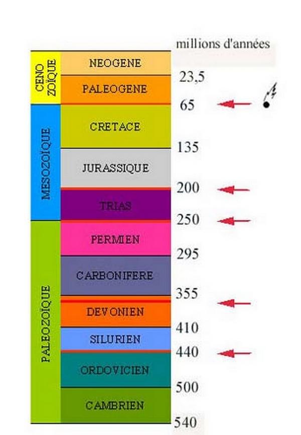 Paleontologie, l'actu... Eric_612