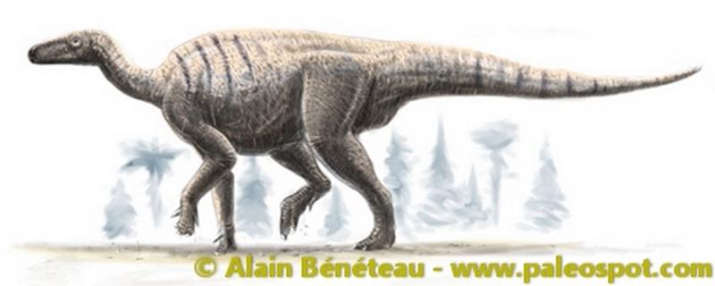 Paleontologie, l'actu... Iguano10