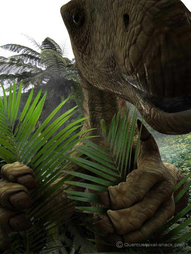 Paleontologie, l'actu... - Page 2 Iguano11