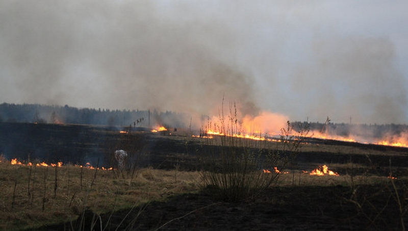 Incendies qui ravagent la Russie... Incend10