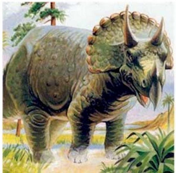 Paleontologie, l'actu... Rtema116