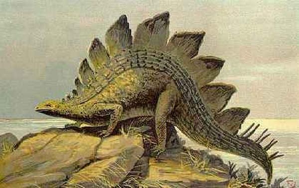 Paleontologie, l'actu... Rtema120