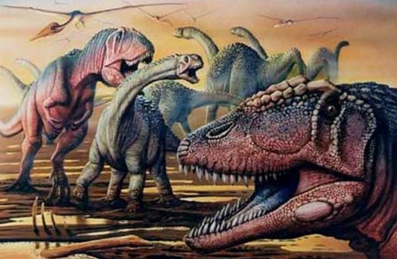 Paleontologie, l'actu... - Page 2 Rtema211