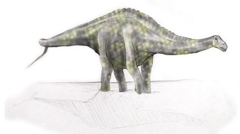 Paleontologie, l'actu... - Page 2 Rtema213