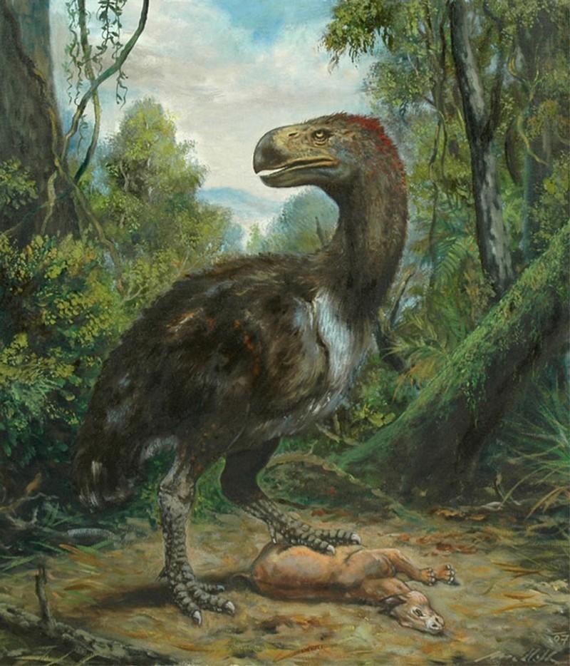 Paleontologie, l'actu... - Page 2 Rtema220