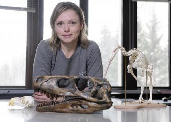 Paleontologie, l'actu... Rtemag31