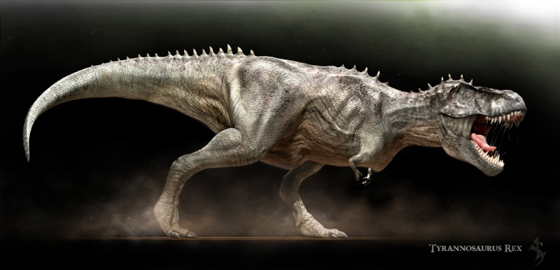 Paleontologie, l'actu... - Page 2 T-rex_10