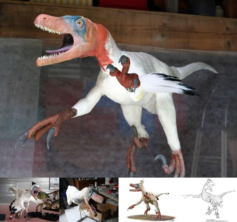 Paleontologie, l'actu... Varira11