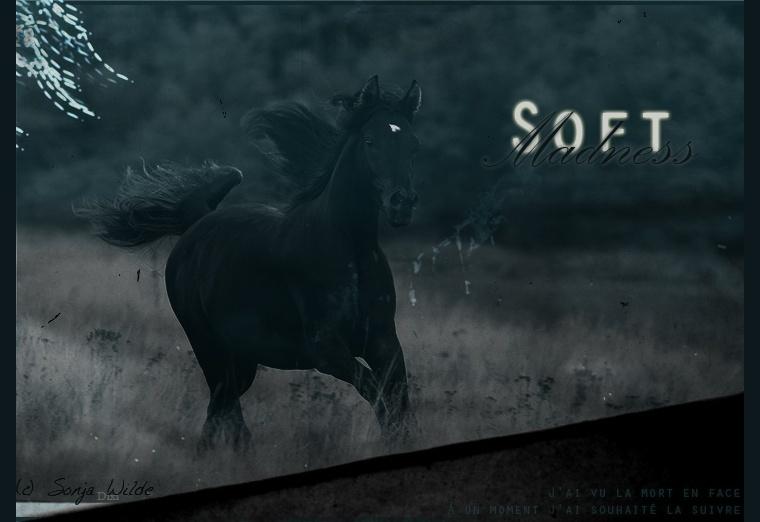 Signa pour Soft Madness (pas commencée) Soft_m10