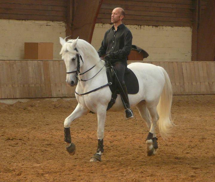 L'équitation sans mors - Page 6 Bernar11