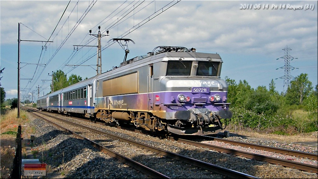 TER 872732 : Il y a un lézard ... 2011_128