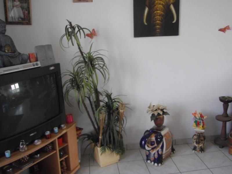 venez visiter la maison ou l'appartement de chaque membres Dscf0417