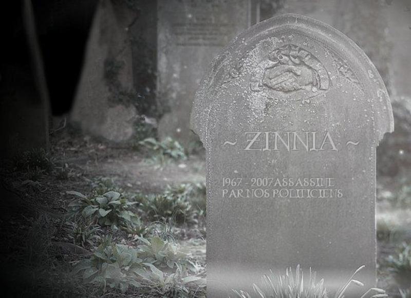 Adieu ZINNIA ! - Page 9 Sansti10