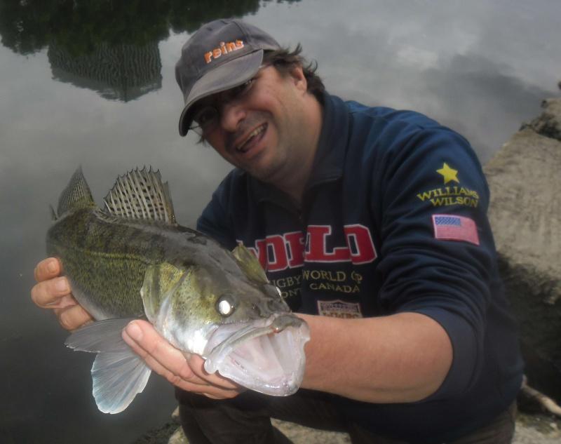 quelques poissons de ces derniers temps ......!!!! 111
