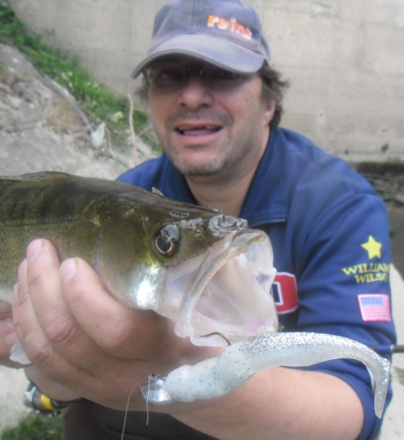 quelques poissons de ces derniers temps ......!!!! 610