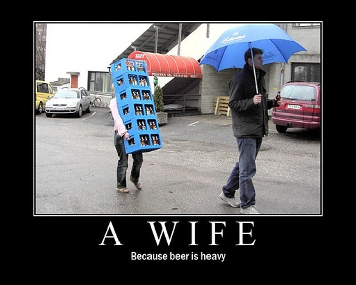 Why you need a wife ... A-wife10