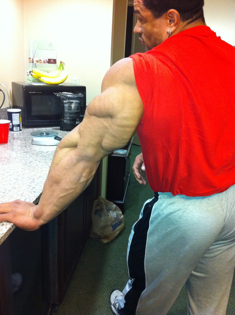 Les triceps de Roelly Winklaar... 8518d_13