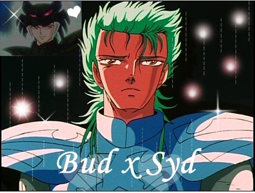 Bud x Syd Bud7110