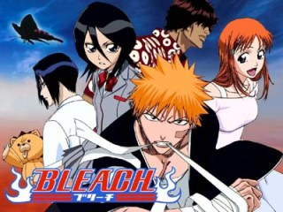what you will do when u see it? Bleach10