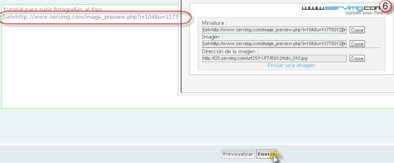 Tutorial como publicar imagenes en el foro Imagen15