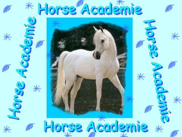 Horse Academie