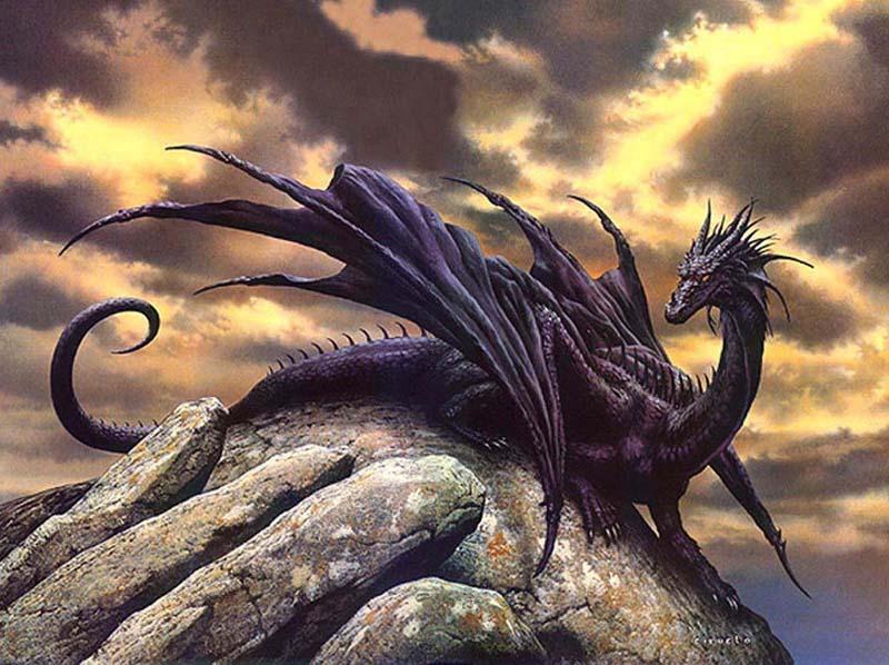 Les Dragons Dragon10