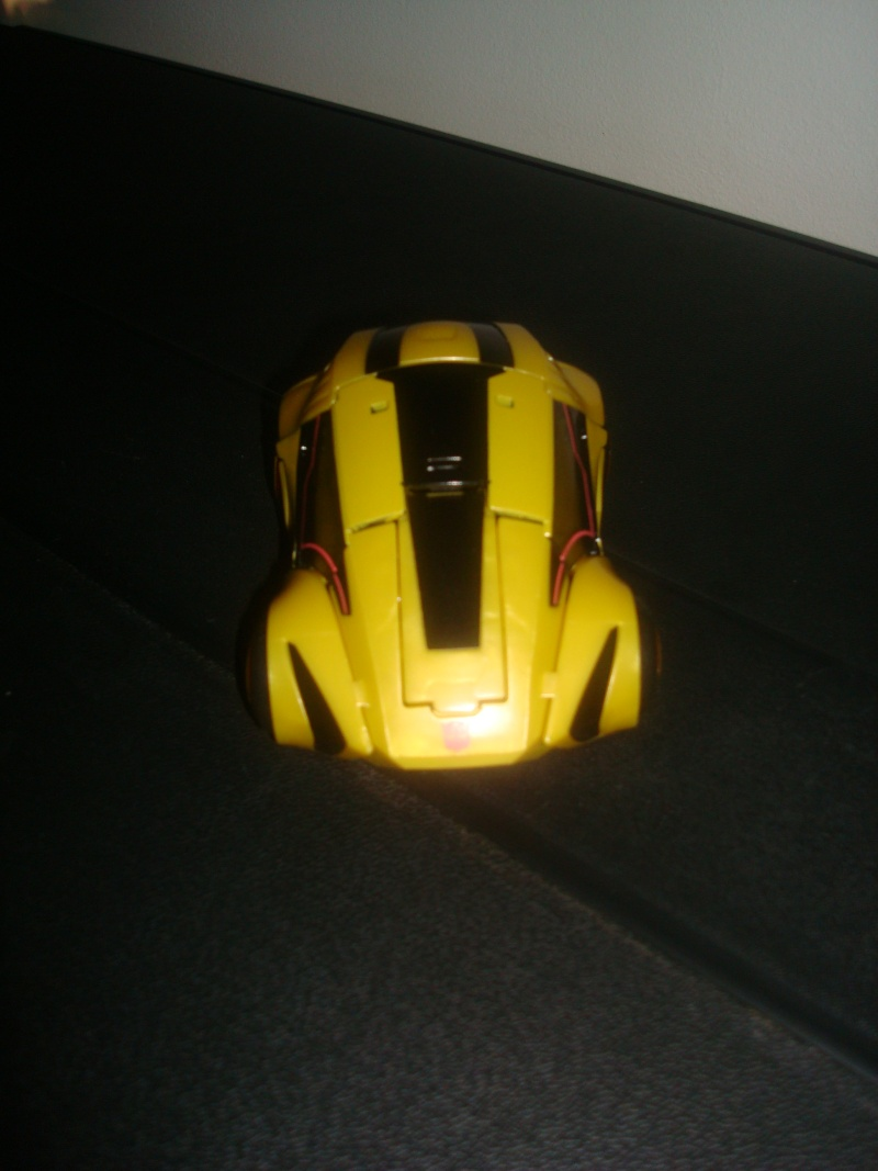Les mechas de Iori (MAJ 21/09/2010) Bumble12