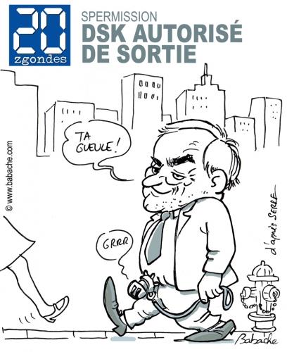 L'histoire DSK vous fait rire, alors éclatez-vous - Page 3 15405810