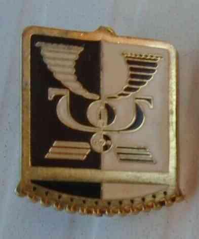 Deux insignes Armée de l'Air? 7insig10