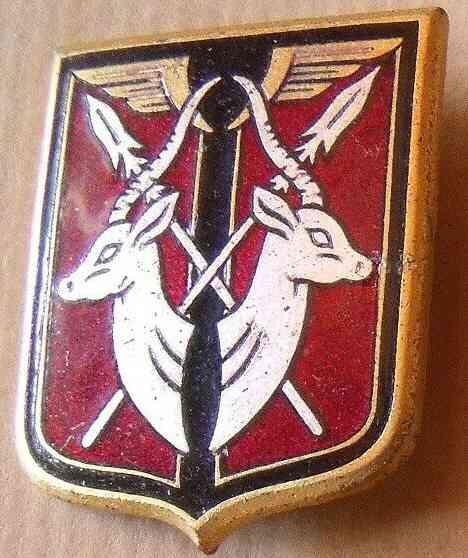 Insigne Armée de l'Air ? Insigne Franco-Tchadien A_iden10