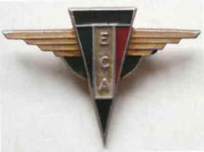 Insigne Armée de l'Air Eca10