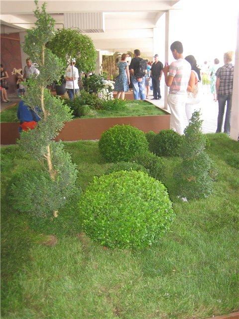 Фестиваль цветов в Алматы - «Алматы – гул кала» D5a59c10