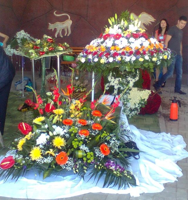 Фестиваль цветов в Алматы - «Алматы – гул кала» Ddnd0017
