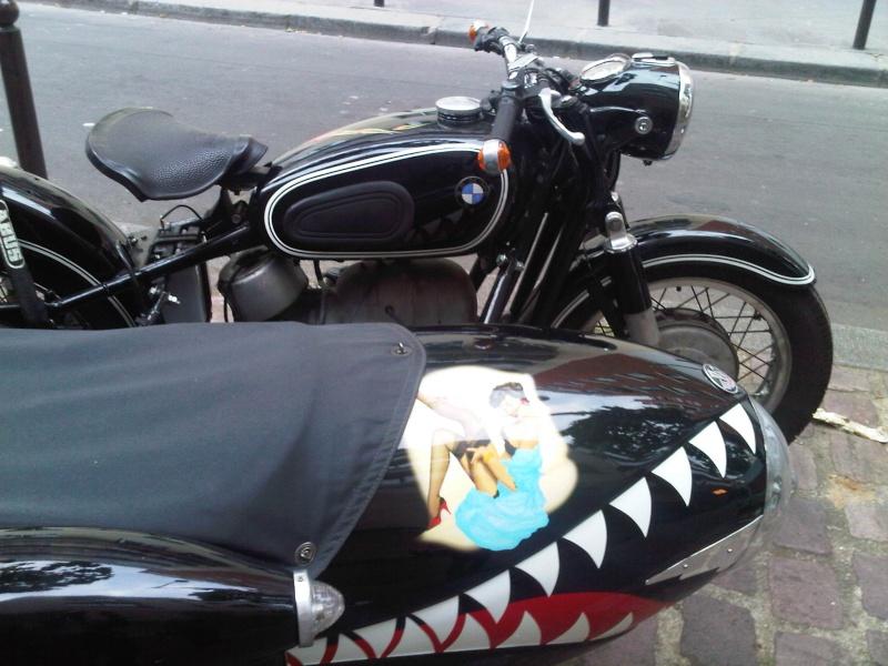 Shark Side Img00412