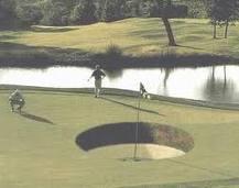 Le golf !!! Images10