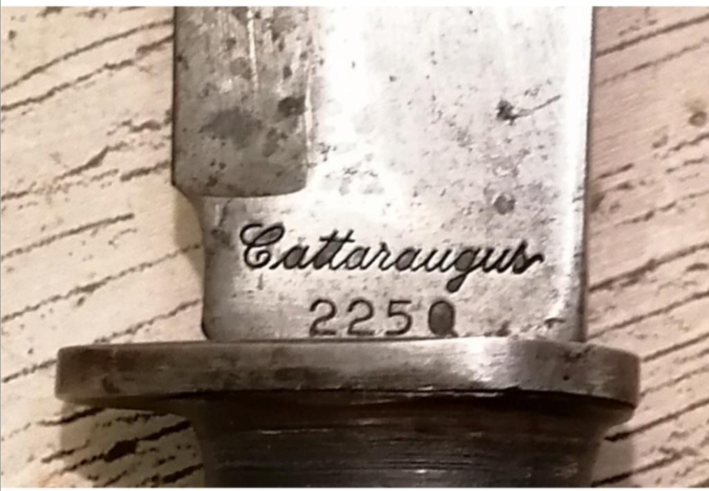 Estimation Cattaraugus 225Q  Screen60