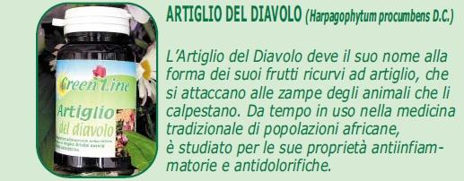 ARTIGLIO DEL DIAVOLO Artigl10