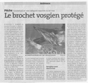 protection du brochet premiere categorie Broche10
