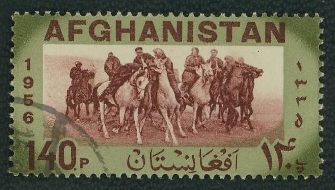 Pferde - Seite 4 Afghan10