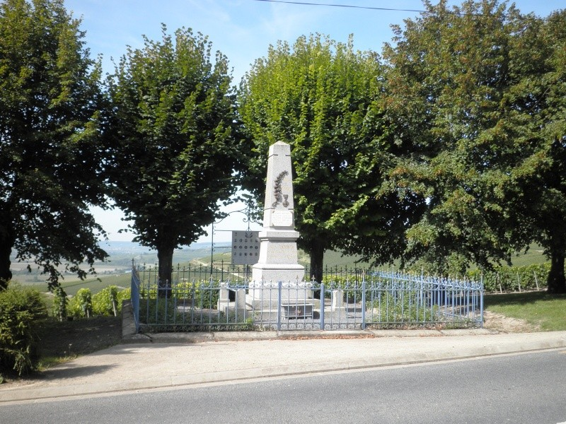 CHÂTILLON-sur-MARNE P9020012