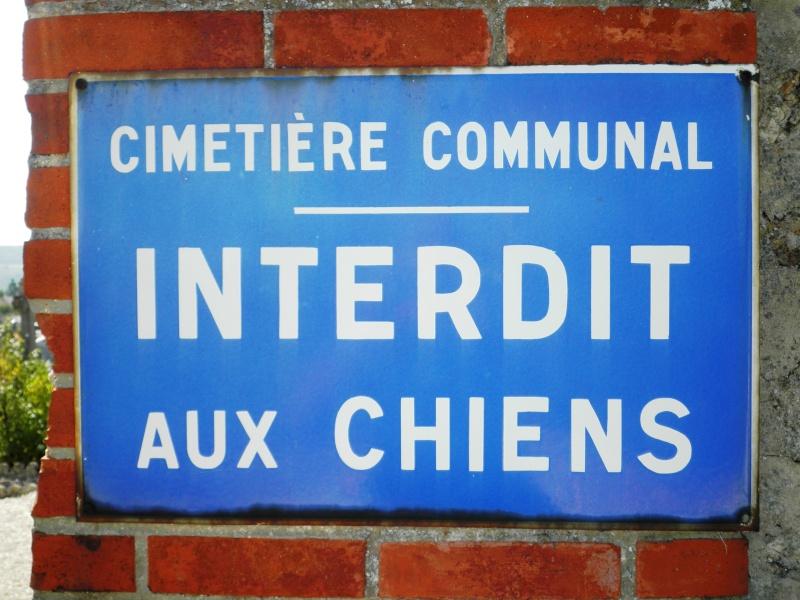 CHÂTILLON-sur-MARNE P9020020