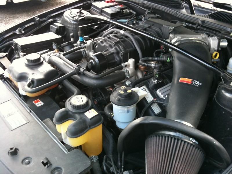[PHOTOS] Shelby GT500 Img_0015