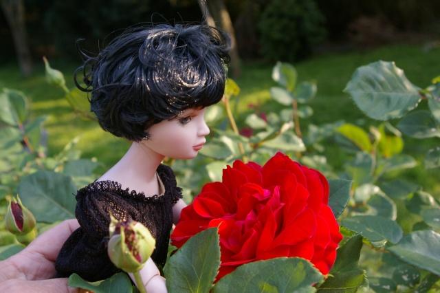 promenade au jardin de Gigi ( Ellowyne Feeling Drained) Imgp9527
