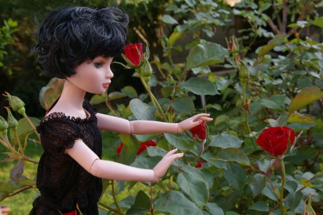 promenade au jardin de Gigi ( Ellowyne Feeling Drained) Imgp9610