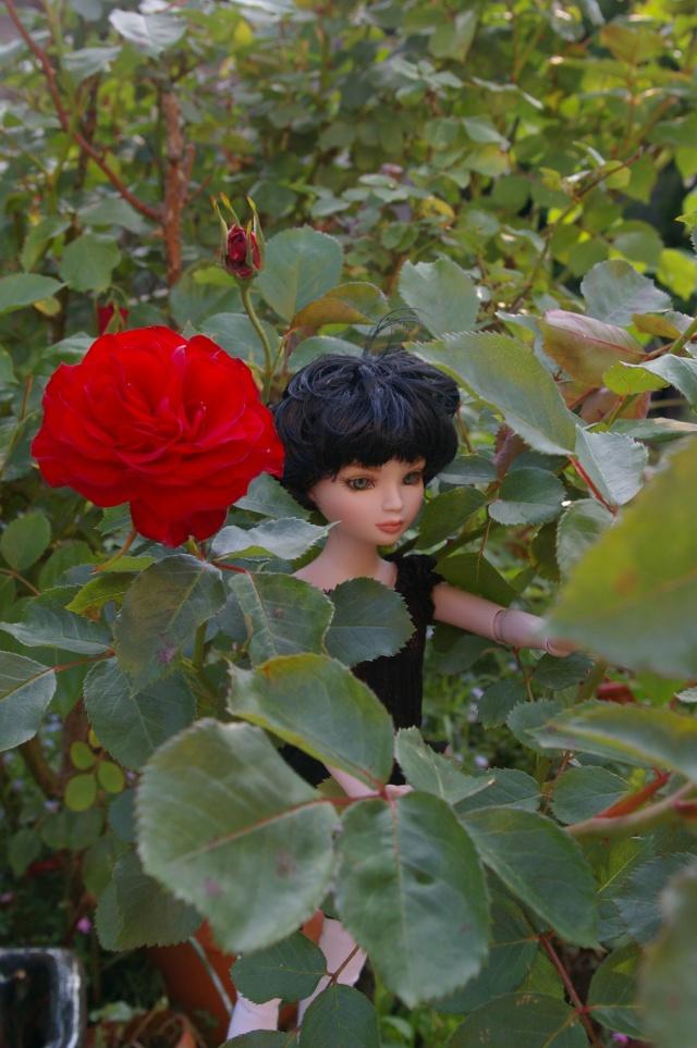 promenade au jardin de Gigi ( Ellowyne Feeling Drained) Imgp9611