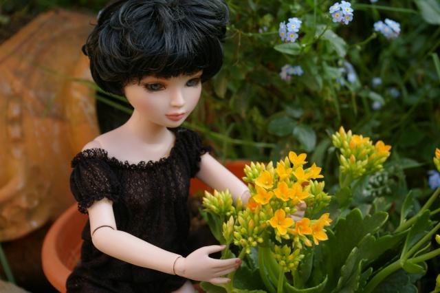promenade au jardin de Gigi ( Ellowyne Feeling Drained) Imgp9613