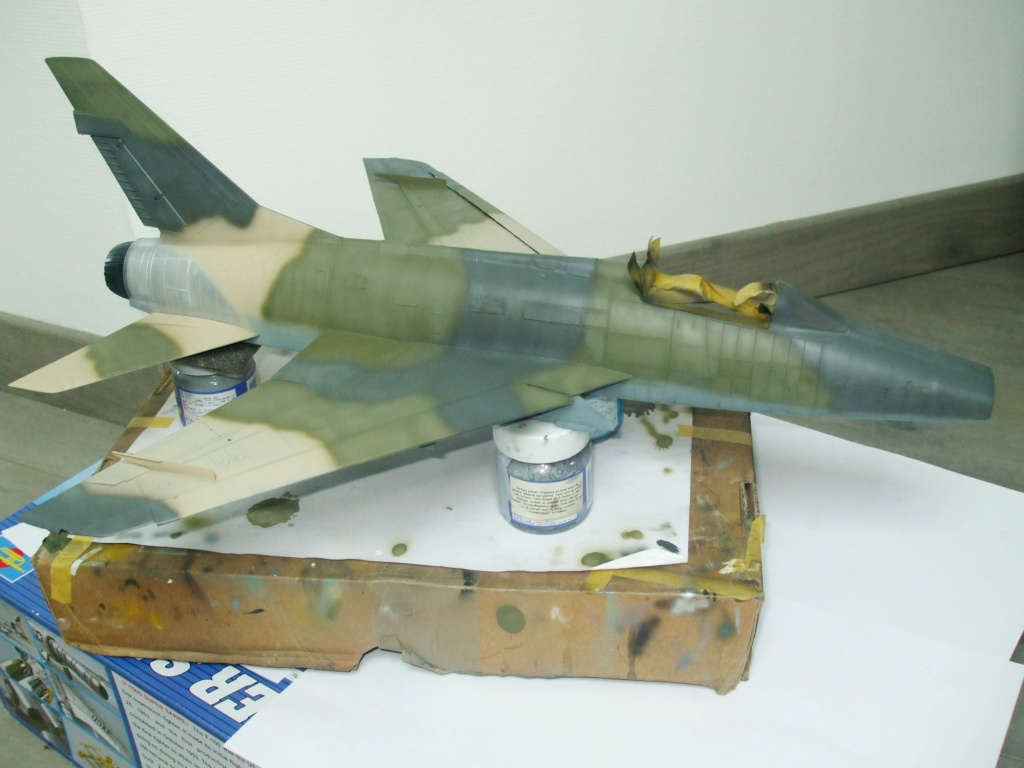 F 100-D TRUMPETER 1/32 - Page 3 Camo_f17