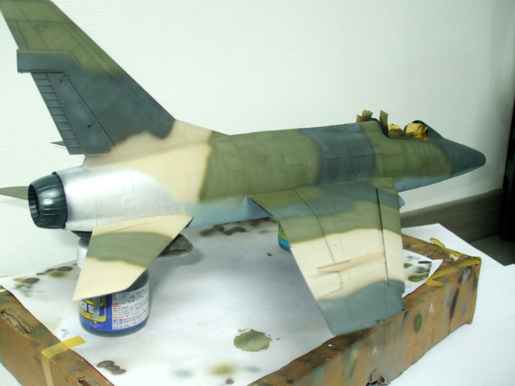 F 100-D TRUMPETER 1/32 - Page 3 Camo_f20